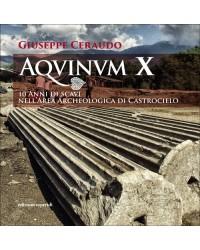 AQUINUM X. 10 anni di scavi...