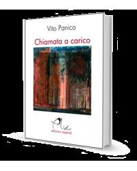 CHIAMATA A CARICO